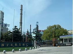 2019扬子石油化工股份有限公司...